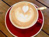 Obtine crema de lapte perfecta pentru cafea
