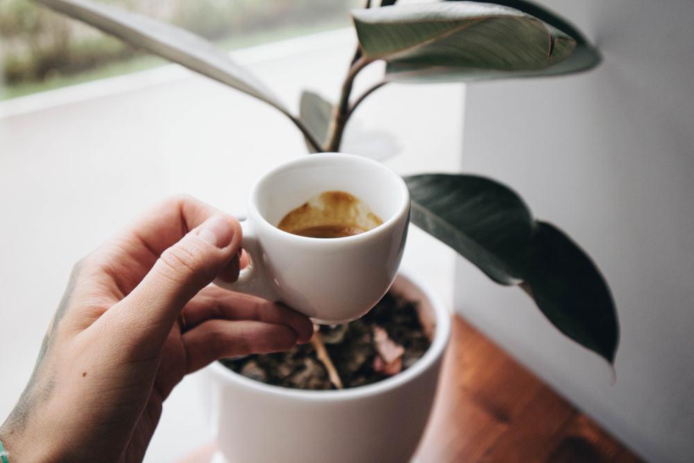 sfaturi despre cum se bea un espresso